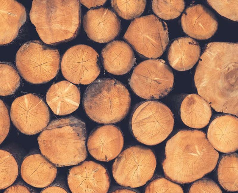 ξυλεία